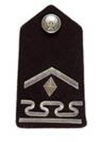 United States Air Force Academy Cadet Insignia - Image: USAF Cadet Staff Sergeant Guidon Bearer shoulder insignia