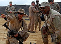 US Navy 100130-N-8829H-019 Commander, Expeditionary Strike Group 5 observes training.jpg