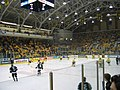 Univ Michigan ice hockey.jpg