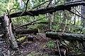 Upplandsleden, Sweden 05.jpg