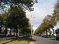 Utting Avenue East - geograph.org.uk - 1563907.jpg