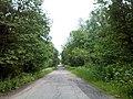 Valdaysky District, Novgorod Oblast, Russia - panoramio (472).jpg