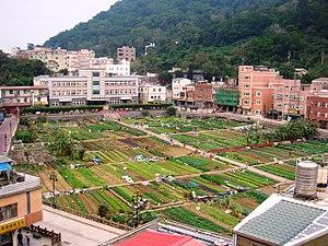 Nangan, Lienchiang - Vegetable Farming Park