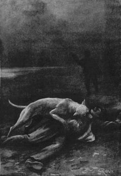 Verne - Les Naufragés du Jonathan, Hetzel, 1909, Ill. page 240