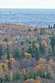 View from Gatineau Park 04.jpg