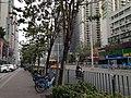 View in Nanshan, Shenzhen, Guangdong 15.jpg