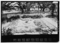 View looking west from the porch - Oakland Plantation, Route 494, Bermuda, Natchitoches Parish, LA HABS LA,35-BERM,2-8.tif