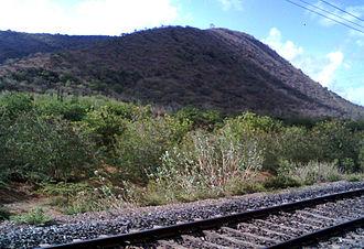Mangalagiri - View of Mangalagiri Hills