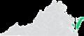 Virginia Senate District 6 (2011).png