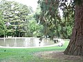 Volunteer Park wading pool 02.jpg