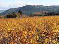 Vue du Castellet depuis la plaine des Paluns.jpg