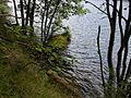 Vylet k Cernemu jezeru Sumava - 9.srpna 2010 181.JPG