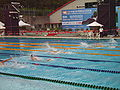 WDSC2007 Day4 M200IndividualMedley.jpg