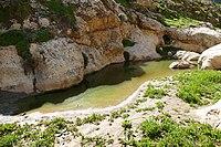 Wadi-Makukh-584.jpg