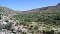 Walnut Canyon P1011709mod.jpg