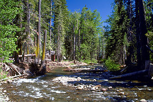 Ward Creek on the western shore of Lake Tahoe ...