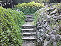 Warszawski Ogród Botaniczny – 32.jpg