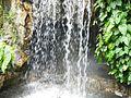 Water Fall, Singapore 259569 - panoramio (4).jpg