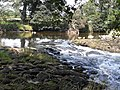 Weir on the River Coquet - geograph.org.uk - 1431322.jpg