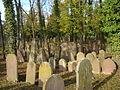 Wiesloch-Jüdischer-Friedhof-2012-61.JPG