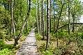 Wildsee-pjt1.jpg