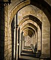 Winchester cathedral (9603962708).jpg