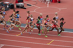 1500 metres at the Olympics - The 2012 Olympic women's 1500 m heats