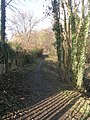 Woodland Path - Easterly Road - geograph.org.uk - 1128277.jpg