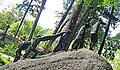 Zakopane - stary cmentarz na Pęksowym Brzyzku........jpg