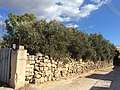 Zejtun properties and niches 13.jpg