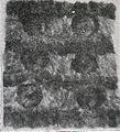 Zobelseiten und Klauen, chinesische Arbeit (nach 1900).jpg