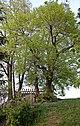 Zwickau Rottmannsdorf - Echo 2 (aka).jpg