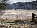 """Standing stone"" at Invershin - geograph.org.uk - 658517.jpg"