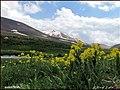 (((طبیعت در دره بایندور سهند ))) - panoramio (2).jpg