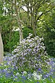 ®s K3 SD Ð ┼ ENGLAND STAFFORD según KATRESYA - panoramio (5).jpg