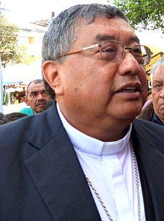 Óscar Julio Vian Morales