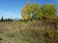 Бывшая станция Машак - panoramio.jpg