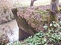 Вароніна. Чортаў камень (Кравец) (06).jpg