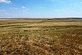 Вид на степь в юго-восточном направлении - panoramio.jpg
