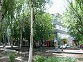 Дом быта - panoramio.jpg