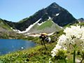 Дукинсое озеро - panoramio.jpg