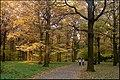 Осень в Ботаническом саду - panoramio (3).jpg