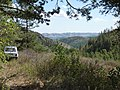 Поляна в начале дороги в Бурангулово(вид на юго-восток) - panoramio.jpg