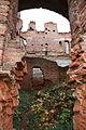 Руины дворца Разумовского.jpg
