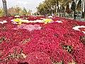 Скверы Душанбе 11.jpg