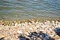 Финский залив. Фото 7.jpg