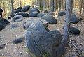 Форма камней образовалась вследствие особого кристаллического строения и последующего выветривания.JPG