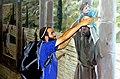 עזרה הדדית בין עולי הרגל לירושלים.jpg