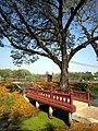 อุทยานประวัติศาสตร์สุโขทัย - panoramio - ----=UT=----.jpg