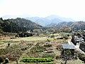 いぬめ - panoramio.jpg